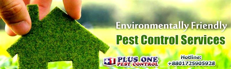 Plus One Pest Control Services